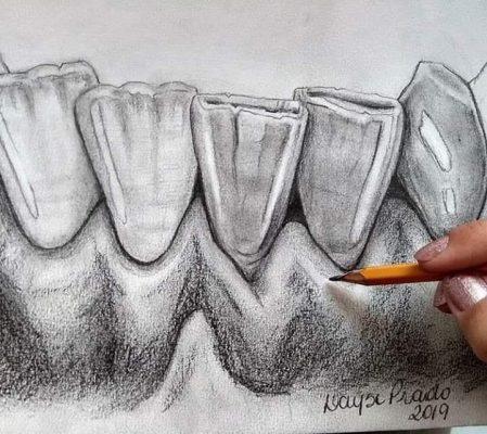 Bài giảng răng, bộ răng và hệ thống nhai